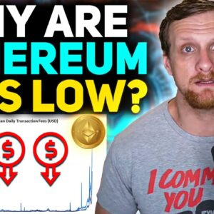 Why Are Ethereum Mining Profits Down?!